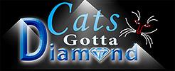 catsgottadiamond.jpg